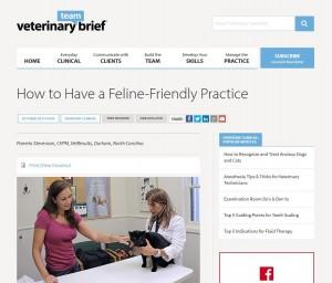 Feline Practice article